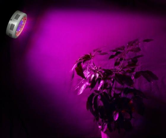50w ufo grow pflanzen led pflanzenlampe lampe mix wuchs bl te licht ebay. Black Bedroom Furniture Sets. Home Design Ideas