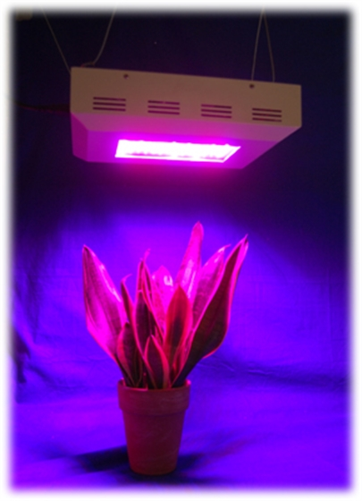600w grow led lampe pflanzenlicht growlampe light hsk23 ebay. Black Bedroom Furniture Sets. Home Design Ideas