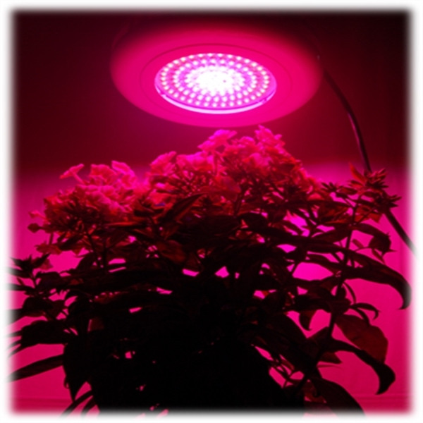 led ufo 90w mix wuchs bl te pflanzenlicht grow lampe neu pflanzenlampe ebay. Black Bedroom Furniture Sets. Home Design Ideas