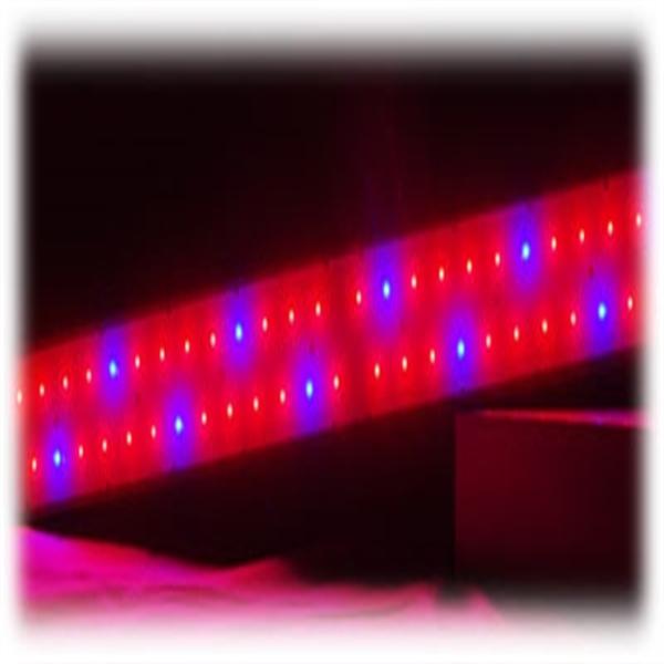 150 watt led growlampe grow pflanzenlicht pflanzenlampe ebay. Black Bedroom Furniture Sets. Home Design Ideas